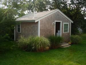 back house (2)