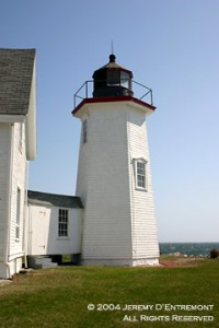 wingsneck light house #6