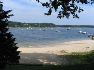COTUIT Neighborhood beach