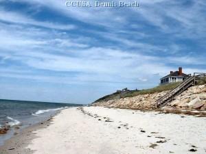 DENNIS  Beach 10