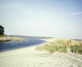 POPPY BEACH
