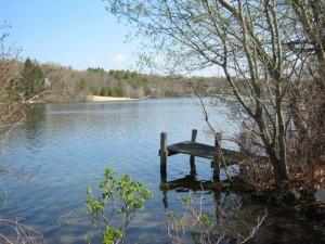 pond view jenkins
