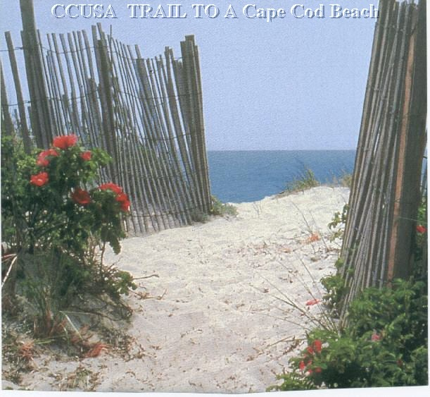 Best Place To Stay On Cape Cod: Year Round & Vacation Rentals, Homes For Sale & Investment
