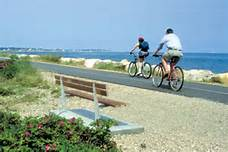 bike the cape cod coast this summer
