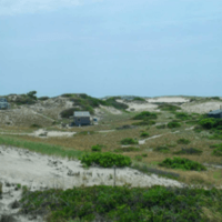 A Living History: The Provincetown Dune Shacks